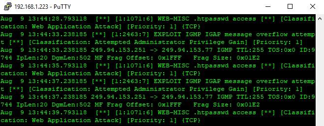 VoIP 安全 – 保护 IP PBX 系统指南