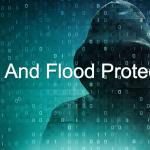 防火墙配置中的DoS和Flood保护